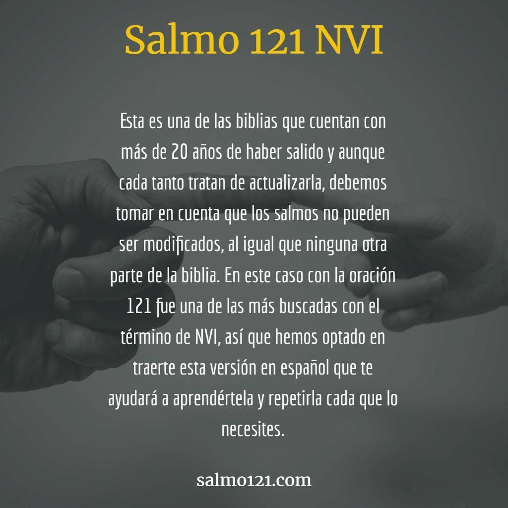 biblia nueva versión internacional