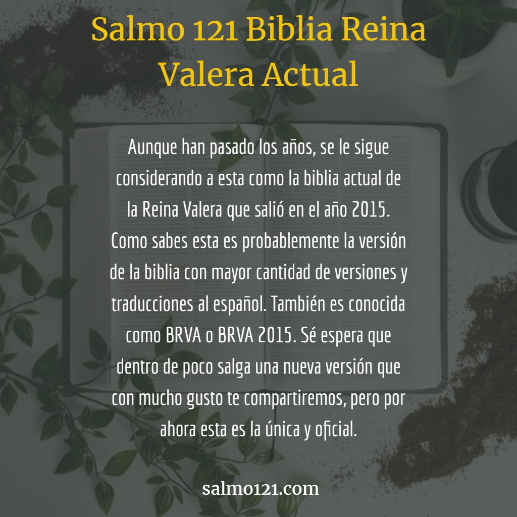 biblia reina valera actual